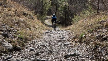 The trail to lake Cavedine