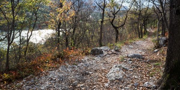 Teil des Abstiegsweges im Herbst, mit dem Cavedine See im Hintergrund