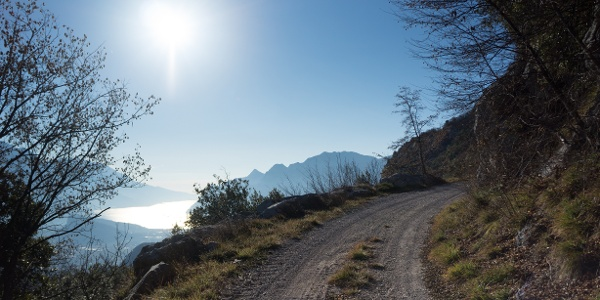 One of the viewpoints, on the forest road in the direction of Bocca di Tovo