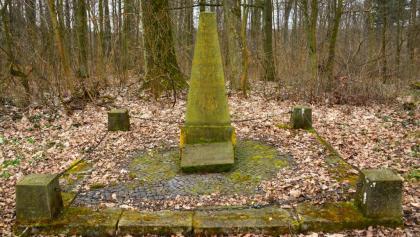Napoleonstein im Vorholz