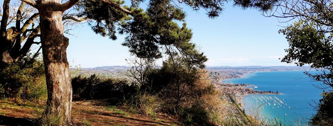 Blick von der Rocca in Richtung Bardolino