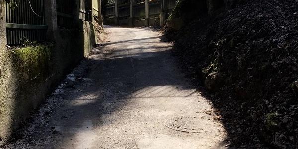 Aufstieg Richtung Schloss Mönchstein