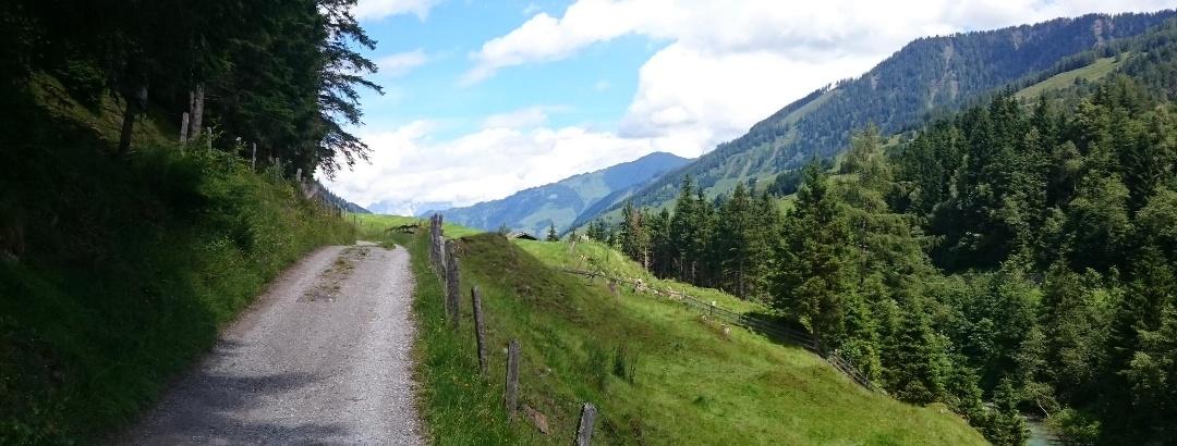 Radwanderweg alte Buchebenstraße