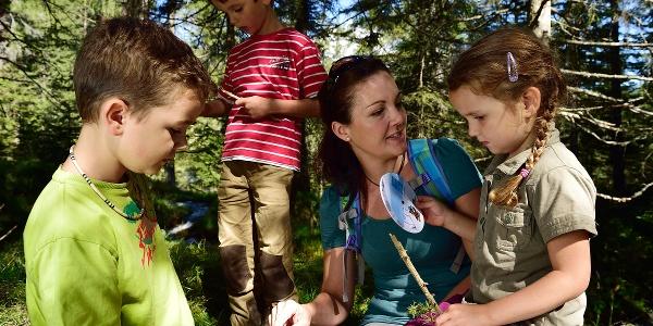 Unterwegs mit der Bergwaldwundertüte Parc