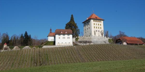 Seetal: Wandertipp Nr.14 Ballwil - Schloss Heidegg - Gelfingen