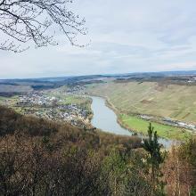 Blick Richtung Mülheim