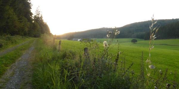 Wanderung auf dem M2 um den Hesseberg.