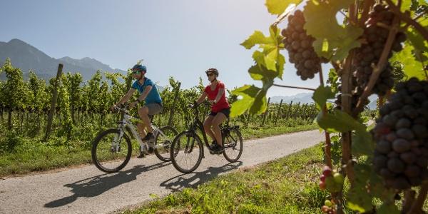 Gemütliche Velotour durch Weinregion Bündner Herrschaft