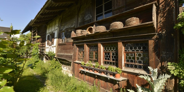 Bohlenständerhaus in Amriswil