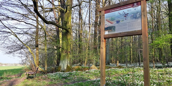 Naturschutzgebiet Kleiner Berg Hohburg