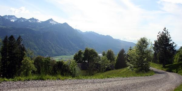 Güterweg oberhalb von Laz