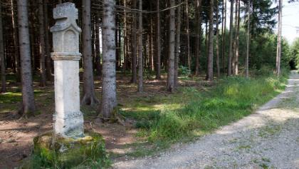 Schwedenstein im Truderinger Wald