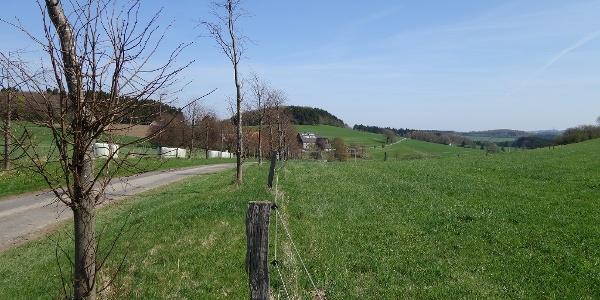 Blick über die Siedlung Wiene hinweg