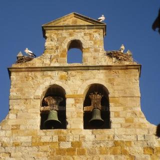 Eine der vielen bewohnten Kirchen in Zamora