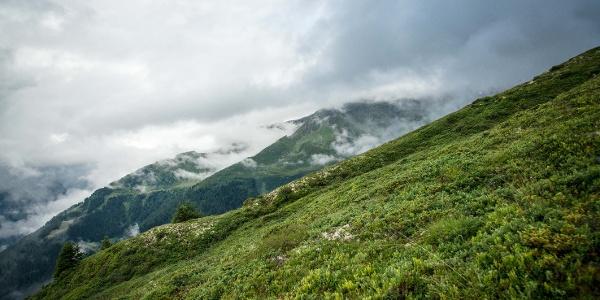 Alp oberhalb von Champéry.