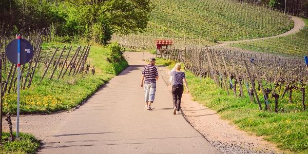 Wanderer auf dem Offenburger Weinwanderweg