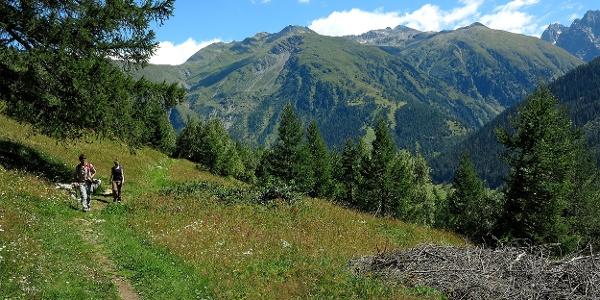 Gommer Höhenweg bei Oberwald.
