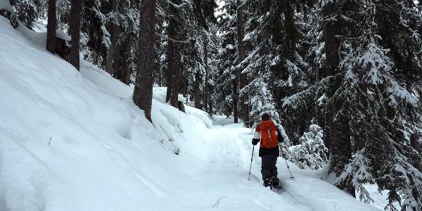 Aufstieg auf dem Blaswald-Trail.
