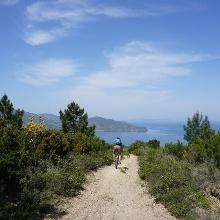 Trail Richtung Meer
