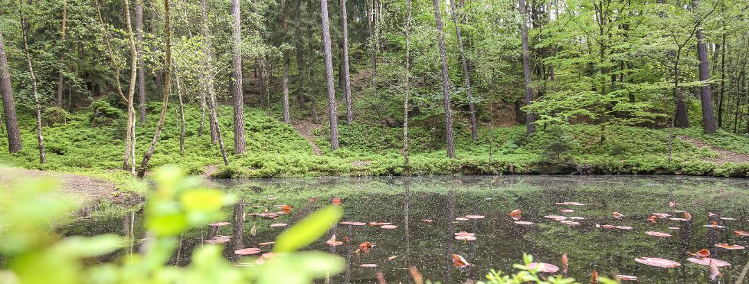 Schwarzes Teichla