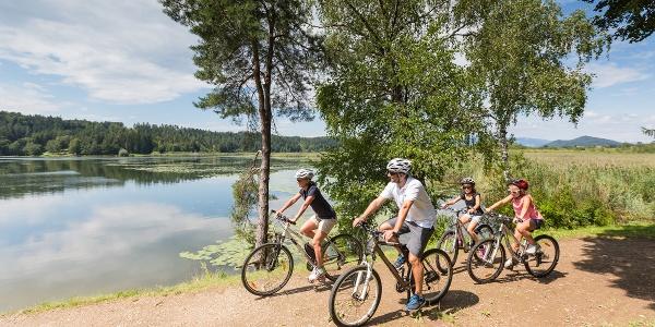 Familie mit dem Fahrrad am Gösselsdorfer See