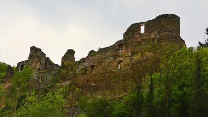 Ruine Dalburg
