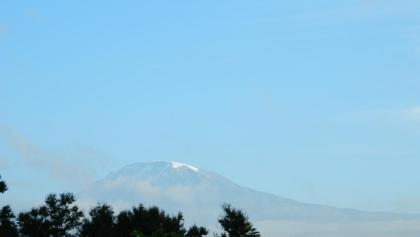 Der Kilimandscharo von Moshi aus