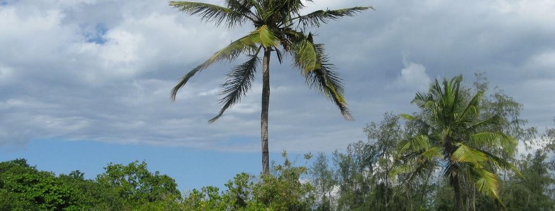 Auf Mbudya Island vor Dar Es Salaam