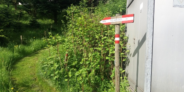 Teigisch-Wartenstein-Runde_Abzweigung Wanderweg