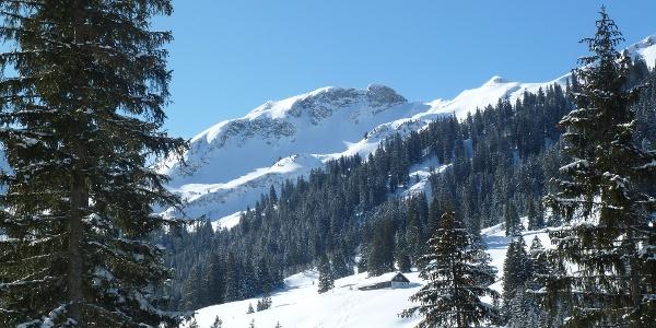 Blick auf die Sulzspitze im Winter