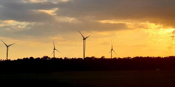 Windräder bei Lühlerheim in der Abendsonne
