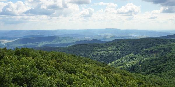 Panoráma a Visegrádi-hegységre (Csóványosi kilátó)