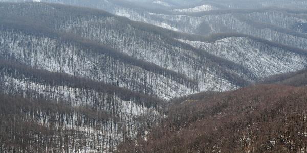 Téli Börzsöny (Csóványosi kilátó)