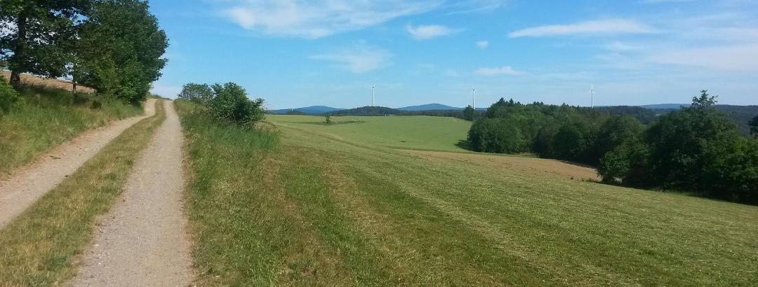 Blick von der Buchleite zurück zum Ochsenkopf und Schneeberg