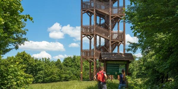 Körtvélyes lookout tower