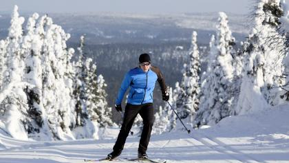 Langläufer in Ruka-Kuusamo