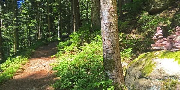 Steinmännchen entlang der Klösterle-Schleife