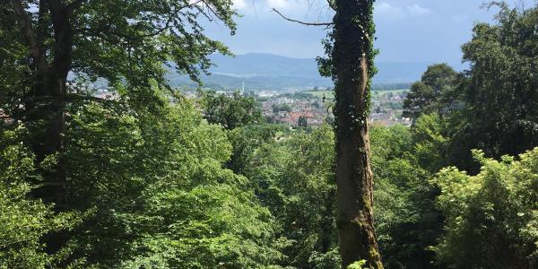 Blick über Gaggenau