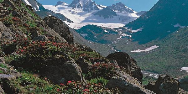 Blick auf Dreiländerspitze, Vordere und Hintere Jamspitze, links Rußkopf