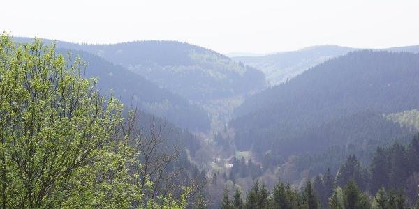 Unterstadt St. Andreasberg versteckt im Tal  | Foto: S. Grüning