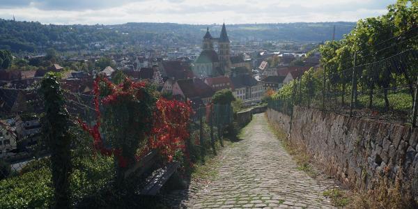 Blick auf Esslingen