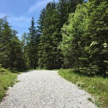Fußweg zum Wimbachschloss