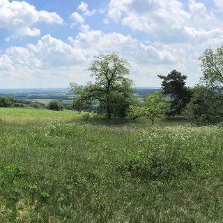 Aussichtspunkt Hochberg Bismarckstein