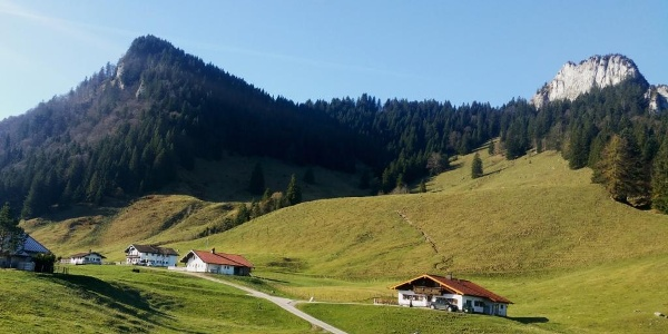 Daffnerwald Almen unterhalb des Heubergs