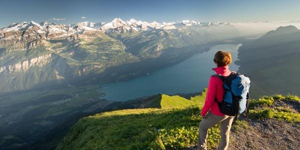 Aussicht vom Brienzer Rothorn auf den Brienzer See und die Berner Alpen