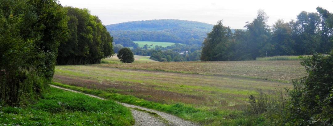 grüne Grenze kurz vor Courcelles überquert