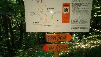 Downhill trails