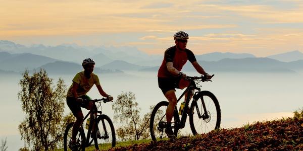 Mountainbiker am Bachtel, Hinwil