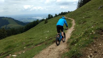 Trailbeginn nach dem Aufstieg, Nach der Kuppe gehts dann in den Wald und den S2-Abshnitt