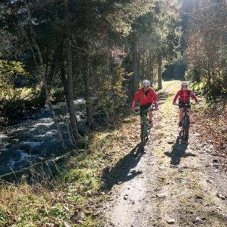 Schöner Waldweg im Obertal